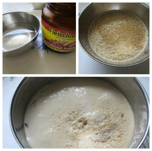 Ferment Yeast