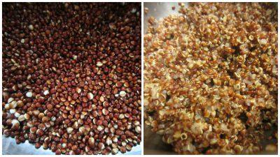 cook-quinoa
